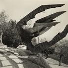 Marcello Guasti, Giovanni Michelucci e il Monumento ai Tre Carabinieri