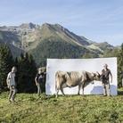Marco Mazzoleni. Segni e Sogni d'Alpe - passione, orgoglio e resilienza