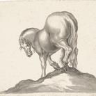 """Il """"cavallo"""" di Jackie Kennedy entra nella collezione degli Uffizi"""