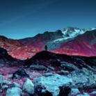 Life in another light: le spettacolari immagini del primo concorso di fotografia a infrarossi