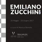 Emiliano Zucchini. Personale