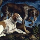 Jacopo Bassano (1510 - 1591), Due cani da caccia, 1548-1549, Olio su tela, 61 x 80 cm, Parigi, Museo del Louvre