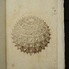 Daniele Barbaro (1514-70). Letteratura, scienza e arti nella Venezia del Rinascimento