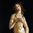 Due Venere di Botticelli si incontrano a Torino