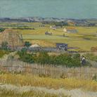 Da Caravaggio e Van Gogh a David Hockney: il 2019 olandese è all'insegna dell'arte