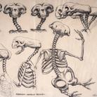 Carlo Rambaldi,Studio con proporzioni e movimenti E.T.: Flessioni testa e tronco | © Fondazione Culturale Carlo Rambaldi