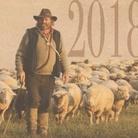 Archeofest 2018 - Transumanza. Popoli, vie e culture del pascolo