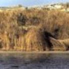 Parco dell'Acquatina Frigole