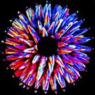 I colori del Bosone di Higgs. Percorsi tra Arte e Scienza