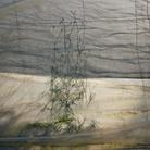 MAST Photography Grant on Industry and Work - Chloe Dewe Mathews, For a few euros more / Per qualche euro in più, Plástico / Plastica (veil / velo # 2), 2019 | © Chloe Dewe Mathews | Courtesy of Fondazione MAST, Bologna, 2020