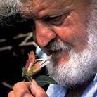 Santo Stefano, inaugurata la mostra 'I fiori di Libereso'