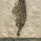 Matteo Ciardini. Al di là del mare è il cielo