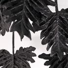 Volcanic Plants. Emilia Faro
