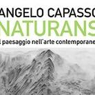 Naturans. Il paesaggio nell'arte contemporanea di Angelo Capasso - Presentazione