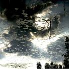 Enza De Paolis. Poesia e metamorfosi della luce