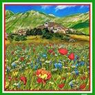 Castelluccio di Norcia, un prezioso fiore nel cuore dell'Italia