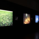 Museocity Milano - Alfredo Jaar. Field, Road, Cloud