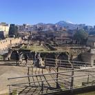 Riapertura del Parco Archeologico di Ercolano