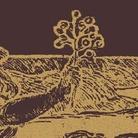 Il colore dell'ombra. Dalla mostra internazionale del Bianco e Nero. Acquisti per le gallerie Firenze 1914
