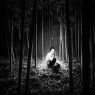 La luna e il bambù. Fotografie di Olmo Amato
