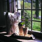 Buongiorno Ceramica!