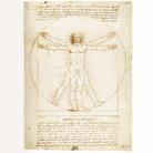 Leonardo da Vinci e la sfida dell'Uomo Vitruviano