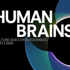 Human Brains - Culture and Consciousness