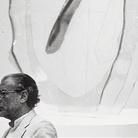 Umberto Mariani. Sinfonie di pieghe: la superficie introflesa