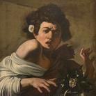 Caravaggio, Fanciullo morso da un ramarro, 1596-1597 circa, Olio su tela, 52.3 x 65.8 cm, Firenze, Fondazione di Studi di Storia dell'Arte Roberto Longhi