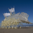 Theo Jansen, STRANDBEEST, Animaris Umerus | © Media Force