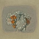 RE-COLLECTING - Morandi racconta. Il fascino segreto dei suoi fiori