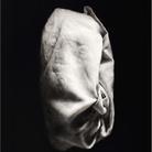 Ettore Frani. L'ombra e la grazia