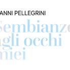 Gianni Pellegrini. Sembianze agli occhi miei