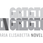 Maria Elisabetta Novello. Grigio in grigio