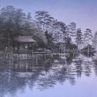 Shoko Okumura. Finestre di luce nei boschi