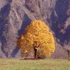 Giornata Nazionale del Paesaggio - Soprintendenze aperte