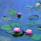 Presto nelle sale l'incantesimo di acqua e luce di Monet