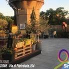 Sinapsi Fest – Festival delle Avanguardie Multimediali