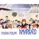 Immaginando Fellini a Rimini