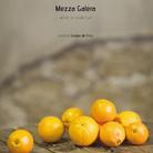 Mezza galera. Artisti in resilienza di Giorgio de Finis