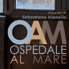 Sebastiano Vianello. Ospedale Al Mare