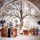 L'Albero della Fecondità torna visibile dopo il restauro