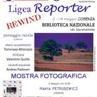 Ligea Reporter Rewind 2015