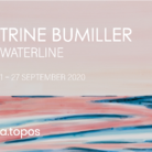 Trine Bumiller. Waterline