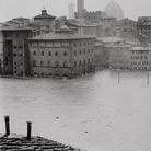 Pescare nel fango: il Museo e l'alluvione