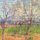 Vincent Van Gogh, Albicocchi in fiore, 1888. Olio su tela, 65,5x80,5 cm. Van Gogh Museum, Amsterdam