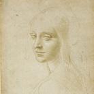 Dal dialogo con i luoghi piemontesi al confronto con l'arte contemporanea: i disegni di Leonardo in mostra a Torino