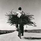 Fulvio Roiter, Sulla strada Gela - Niscemi, Sicilia, 1953 | © Fondazione Fulvio Roiter