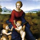 Un miracolo di naturalezza. La Madonna del Belvedere di Raffaello