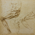 I disegni di Michelangelo presto in mostra alla Pinacoteca Agnelli